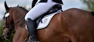 Forces Equine British Dressage Championships 2017 update
