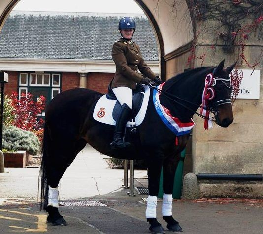 Talented ACF Horse Woman Wins Awards